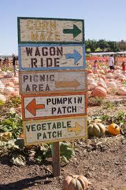 Flagstaff Pumpkin Patch Train by List Of Fall Festivals In Phoenix U0026 Greater Arizona