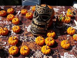 Pumpkin Patch Naples Fl by Find Pick Your Own Pumpkin Patches In Florida Corn Mazes And