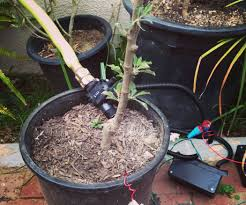 Hose Faucet Timer Wifi by Raspberry Pi Irrigation Controller 9 Steps With Pictures
