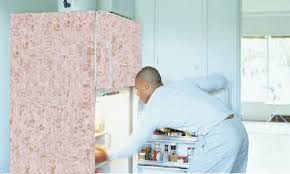 Insulating Carpet by Save Energy The Shagadelic Way How To Insulate Your Refrigerator
