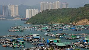 100 An Shui Wan FileFishing Rafts At Tam And Shek Tsai Ma Hong