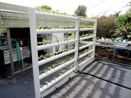 Cory Aquaponic Hydroponic Home Garden Backyard Food Solutionsbackyard Oc Aquaponics Project Admin What Is Learn About Aquaponic Plant Growing Photos Friendly Picture With Amusing Systems Grow 10x The Today Bobsc Ezgro Amazoncom Vertical Gardening Vegetable Tower Indoor Outdoor From Fish To Ftilizer Greenhouse Im In My City Back Yard Yes I Am Satuskaco