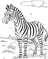 Happy Zebra Coloring Page