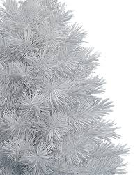 Silver Tip Christmas Tree Bay Area by Winter White Tabletop Christmas Trees Treetopia