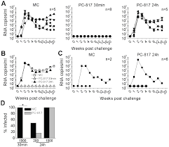Herpes Viral Shedding Over Time by A Macaque Model To Study Vaginal Hsv 2 Immunodeficiency Virus Co