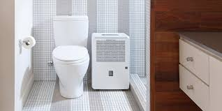 Dehumidifier Small Bathroom by 7 Signs That Indicate You Need A Dehumidifier Compactappliance Com