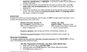 Resume Title Examples For Mba Awesome Name Samples With Additional Template Sample