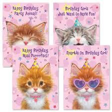 Amazoncom Favorite Soft Rug Cat Paw Litter Mat Pet Supplies