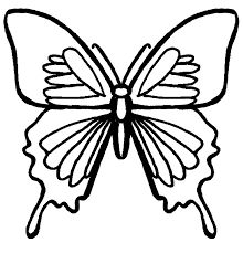 Butterfly Coloring Pictures 1