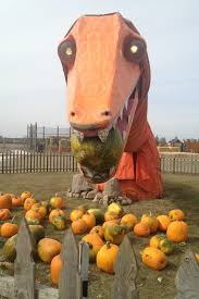 Bengtson Pumpkin Farm Lockport by 20 Best Halloween Images On Pinterest Halloween