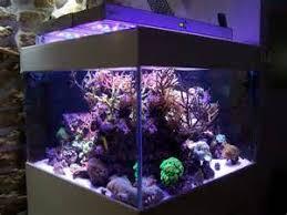 eclairage led pour aquarium eau de mer eclairage aquarium recifal led lumirium eclairage led pour