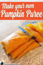 Water Bath Canning Pumpkin Puree by 241 Best Canning U0026 Preserving Images On Pinterest Canning