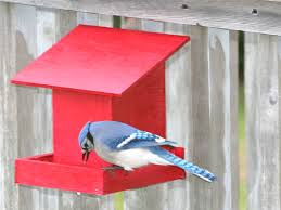 pdf blue jay birdhouse plans diy free wooden shelf bracket design