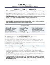 100 Assistant Project Manager Resume S Atlanta Creative Senior Ga Guzzitalia
