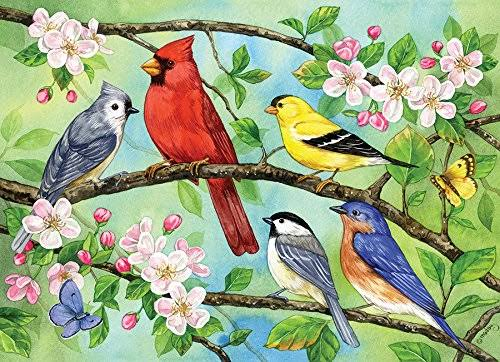 Outset Media Games OM54606 Bloomin Birds Family Puzzle 350 Piece