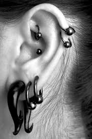 fraidy cats piercing 100 best piercing images on jewelry peircings and