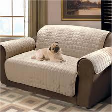 Snoozer Overstuffed Sofa Pet Bed by Sofa Dog Sofa Cover Unique Mainstays 1 Piece Stretch Fabric Sofa