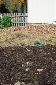Rethinking Mulch Gardening Reformation Acres