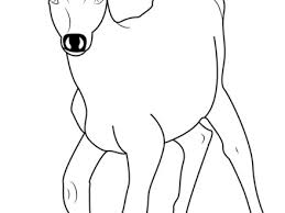 Deer Color Pages Free Coloring Of With Antlers Page