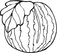 Healthy Watermelon Fruit Coloring Pages