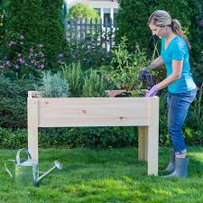 Raised Garden Beds vs Elevated Garden Planters Outdoor Essentials