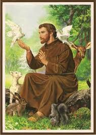 pin by barbara riebe on st francis of assisi