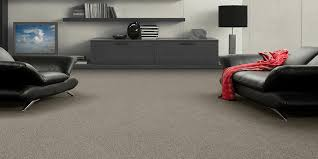 Insulating Carpet by Carpets Distinct Solutions