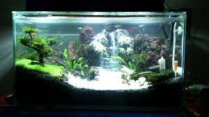 Aquascape - Waterfall [ Air Terjun ] By:Najat 3 Rd - YouTube Aquascape Waterfall Tjupinang Part 2 Youtube Modern Aquarium Design With Style For New Interior Aquascape Low Cost My Waterfall Nhaquascape Pro Pondwater Feature Pumpschester Rockingham Diy Pondless Waterfallsbackyard Landscape Ideasmonmouth Nj Aqualand Nighttime Winter By Inc Photo Projectswarwickorange Countynynorthern Its Called Strenght Of A Thousand Stone Backyard Waterfalllow Maintenance Water Just Add And Patio Amazoncom Kit 3 W Free Led 3light