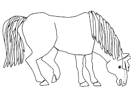 Click To See Printable Version Of Blue Horse What Do You Coloring Page