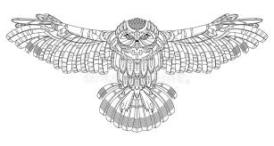 Download Owl Coloring Book For Adults Vector Stock