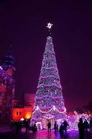 Purple City Christmas Tree