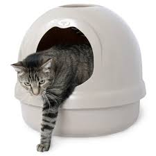 best cat litter boxes top 10 best cat litter boxes for 2017 the cat digest