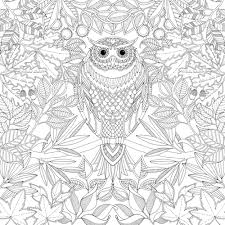 Secret Garden Adult Colouring Book