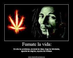 Imagenes De Frases De Decepcion En La Amistad Garden by Imagenes Con Frases De Fumar Marihuana Versos Cortos Para