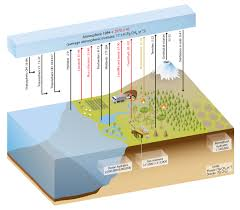 Define Carbon Sink Geography by Ipcc Updates For Science Teachers Metlink Teaching Weather And