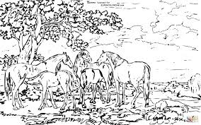 Landscape Coloring Page Detailed