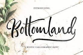 Bottomland O Ink Script Fonts Creative Market