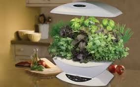 indoor gardening with aerogarden aeroponics treehugger