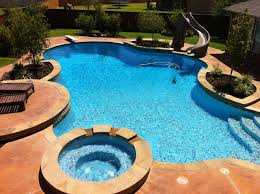 Freeform Pool With Diving Board Slide Traditional