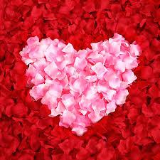 Aliexpress Buy 300 Pcs Artificial Silk Rose Flower Petals