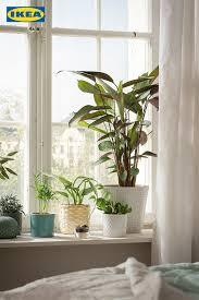 pflanzenliebe wohnzimmer pflanzen vintage schlafzimmer