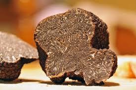 comment cuisiner la truffe cuisiner truffe inspiration de conception de maison