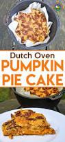 Pumpkin Pie Blizzard by 6718 Best Pumpkin Images On Pinterest Pumpkin Recipes Fall
