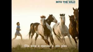 Eddie Vedder No Ceiling by Hard Sun Eddie Vedder Into The Wild Subtitulos Español Youtube