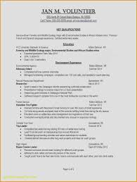 A Resume Is Awesome Typing Beautiful Examples Resumes Ecologist 0d How