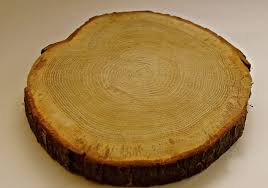 Rustic Cheese Board Round Wedding Cake Stand Serving Platter Chunky Bark