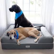 pet beds shop the best deals for nov 2017 overstock com