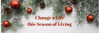 Christmas Tree Cataract Surgery by Essential Vnhelp