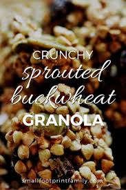 Sprouted Pumpkin Seeds Phytic Acid by Crunchy Sprouted Buckwheat Granola Small Footprint Family
