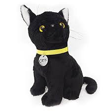 cat merchandise audience rewards shop till you sing